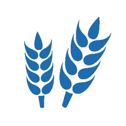 Sachet céréales, farine & sucre